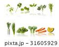 野菜 31605929
