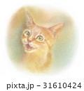 猫 子猫 鳴くのイラスト 31610424