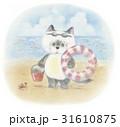 猫 子猫 海のイラスト 31610875