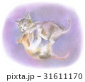 兄妹げんかする子猫 31611170