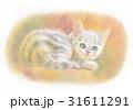 木漏れ日の子猫 31611291