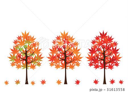 紅葉のイラスト素材 31613558 Pixta