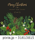 ベクター クリスマス プランツのイラスト 31613815