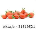 ミニトマト1 31619521