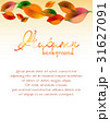 Abstract background with colorful autumn leaves 31627091