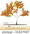Abstract tree in green red yellow foliage at fall 31627097