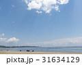 夏の海岸 31634129
