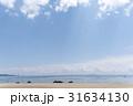 夏の海岸 31634130