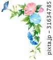朝顔 花 植物のイラスト 31634785