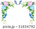 朝顔 花 植物のイラスト 31634792