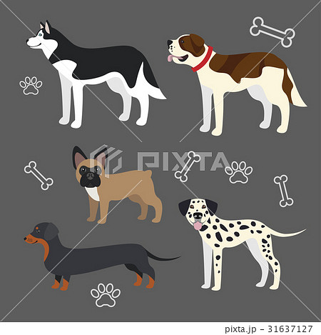 Set of vector funny dogs 31637127