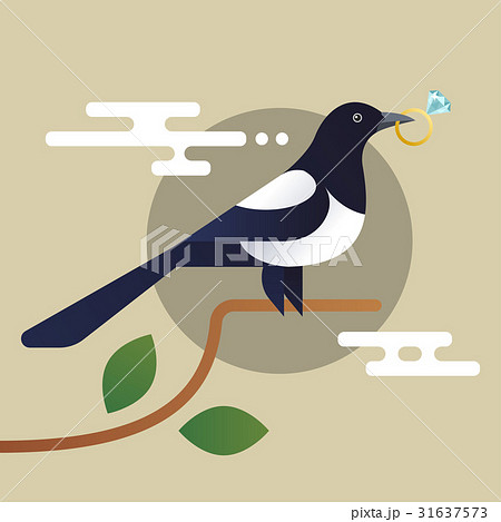 Vector illustration of magpie, holding the diamond 31637573