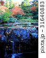 秋色背景の池の堰 31640883