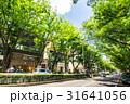 東京 表参道 31641056