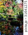 秋の紅葉庭園 31641275