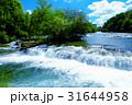 ナイアガラの滝 31644958