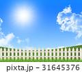 草原 31645376