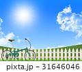 自転車 31646046