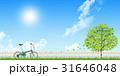 自転車 31646048