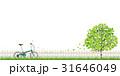 自転車 31646049