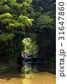 君津市の濃溝の滝 31647860