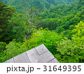 三徳山 風景 自然の写真 31649395