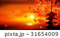 紅葉 もみじ 風景 背景  31654009