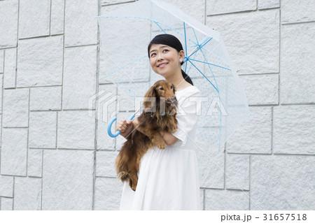 ビニール傘をさす女性 31657518