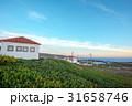ロカ岬 夕焼け 岬の写真 31658746