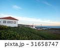 ロカ岬 夕焼け 岬の写真 31658747