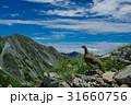 立山 北アルプス 自然の写真 31660756