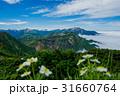 立山 北アルプス 自然の写真 31660764