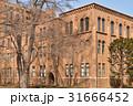 総合博物館 旧理学部本館 北海道大学の写真 31666452