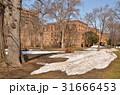 総合博物館 旧理学部本館 北海道大学の写真 31666453