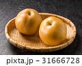 梨 pear 31666728