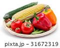 夏野菜の集合 31672319