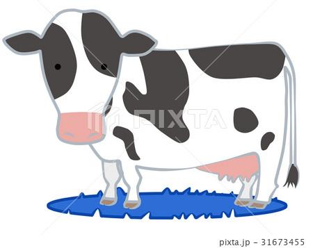 乳牛のイラスト素材 31673455 Pixta