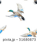 Watercolor vector pattern with ducks 31680873