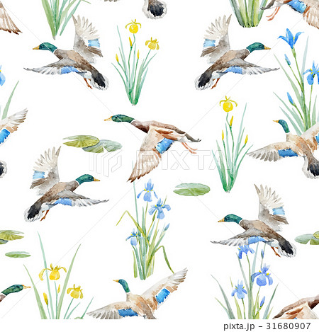 Watercolor vector pattern with ducks 31680907