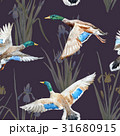 Watercolor vector pattern with ducks 31680915