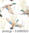 Watercolor vector pattern with ducks 31680920