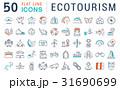 Set Vector Flat Line Icons Ecotourism 31690699