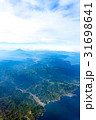 伊豆半島上空、空撮、航空写真 31698641