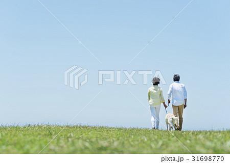 シニア夫婦と犬 草原と青空 31698770