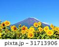 富士山 山 青空の写真 31713906