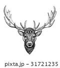 動物 手描き 手描きののイラスト 31721235