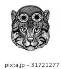 野生 ねこ ネコのイラスト 31721277