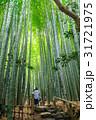 鎌倉 報国寺 竹林の写真 31721975