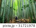 鎌倉 報国寺 竹林の写真 31721978