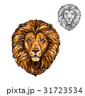 Lion muzzle African wild animal vector sketch icon 31723534